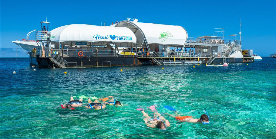 Snorkelling at the Great Barrier Reef Whitsundays Overnight Tour