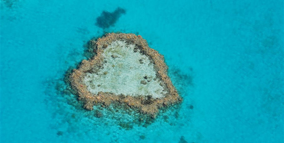 See the Heart Reef by Seaplane from the Whitsundays