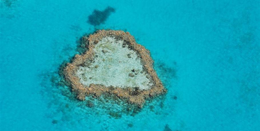 Heart Reef by Seaplane