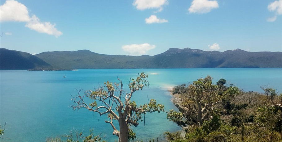 Whitsundays View Point