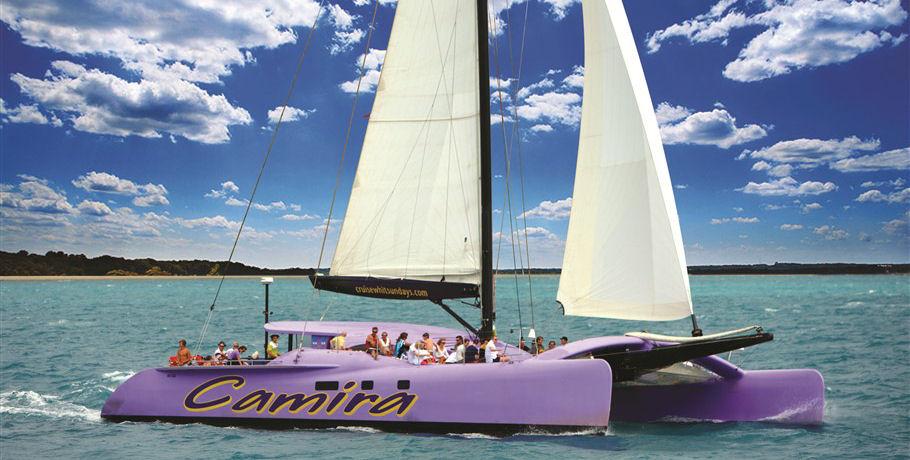 Purple Catamaran