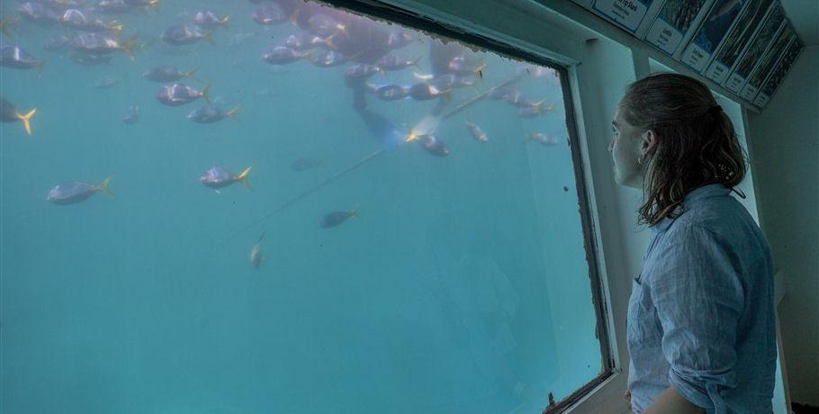 Under Water Observatory